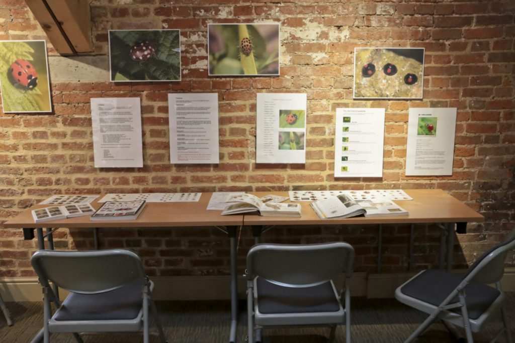 An activity station on the mezzanine level has a desk, chairs and information posters, pictures and books to teach children about animals and wildlife at Clumber Park National Trust Property