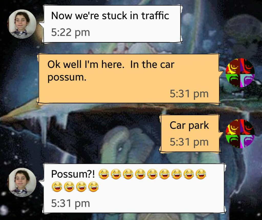 Another autocorrect fail message 'Now we're stuck in traffic' 'In the car possum' In the car PARK!