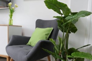 Wayfair Pantone Greenery inspiration close-up of grey chair with green cushion next to a table with a green vase containing tulips and an artificial floor standing Taro plant