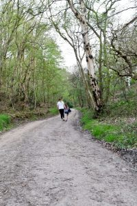 Walking along one of the many trails at Kelling Heath Holiday Park