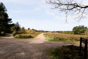 Kelling Heath Holiday Park is set in an area of outstanding natural beauty