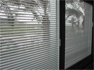 Integrated Window Blinds