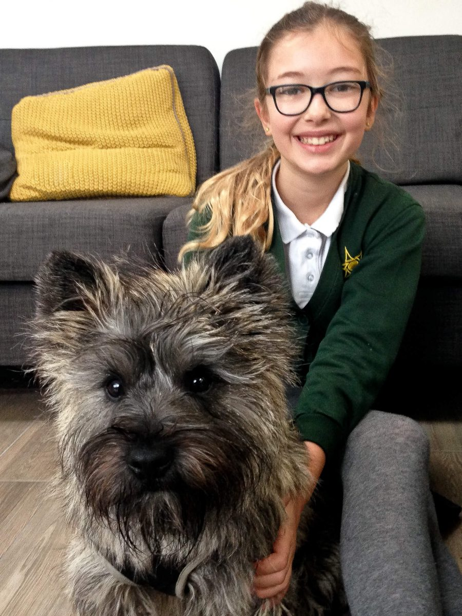 OUr daughter and our Borrow my doggy cairn terrier
