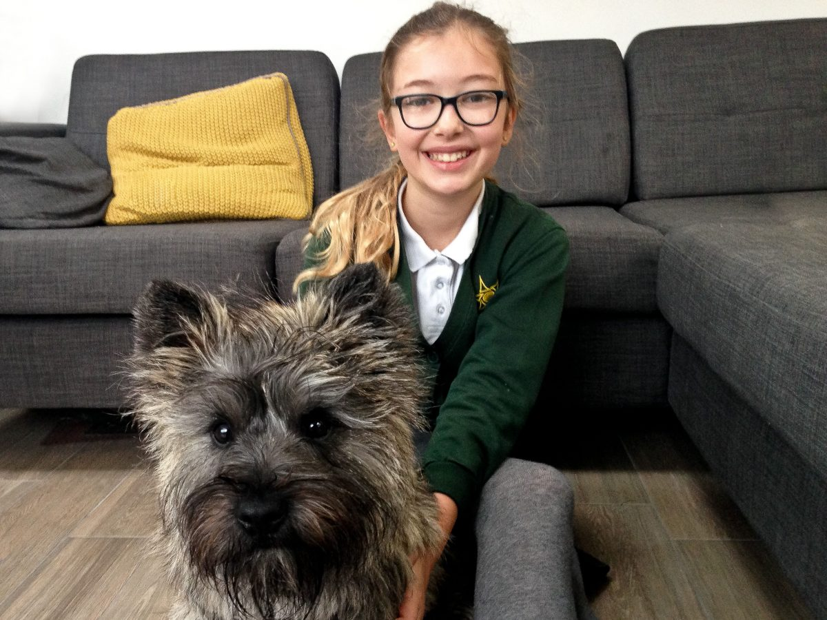 Our experience of Borrow My Doggy our youngest daughter with Kubo the Cairn Terrier