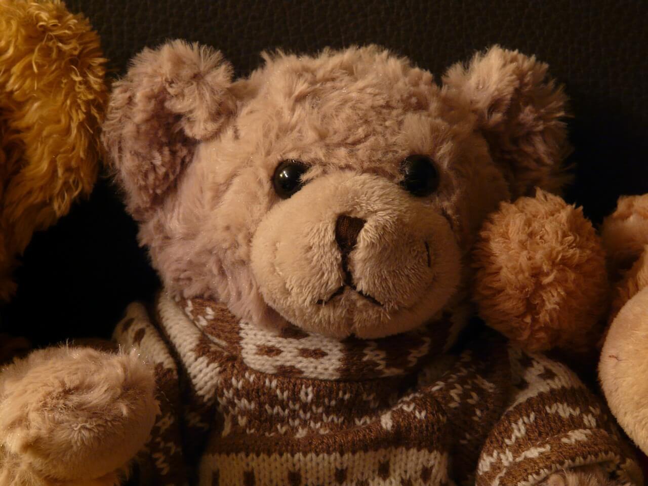 Teddy Bear in jumper